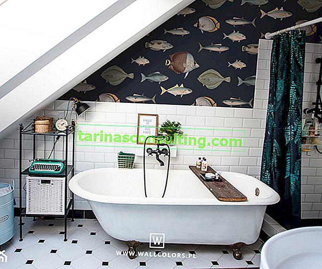 Decorazioni per il bagno - 5 idee per la decorazione del bagno