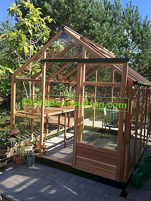Costruire una serra - come costruire una serra da giardino?
