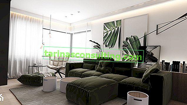 Grüne Wanddekorationen - modisch und stilvoll