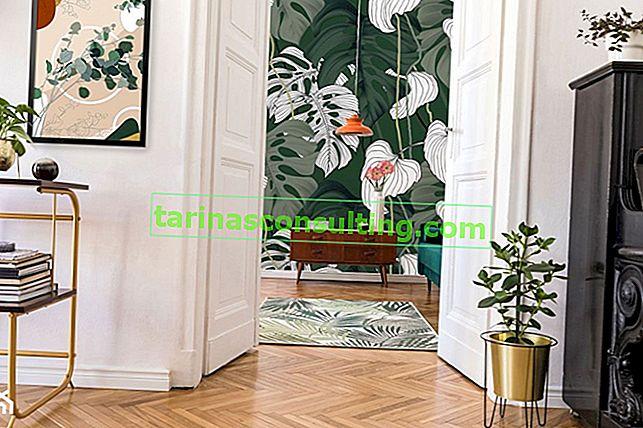 Pflanzenmotive - ein heißer Trend und eine inspirierende Idee für die Dekoration jedes Interieurs!