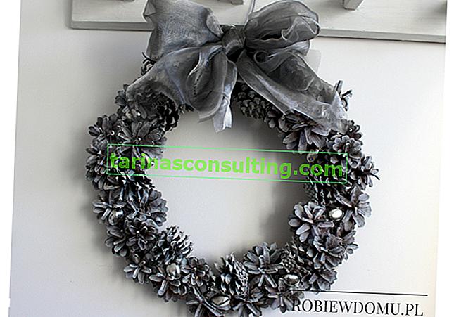 Comment faire une couronne de cônes de Noël?