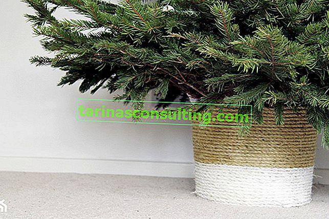 Come realizzare un cesto per albero di Natale impermeabile?