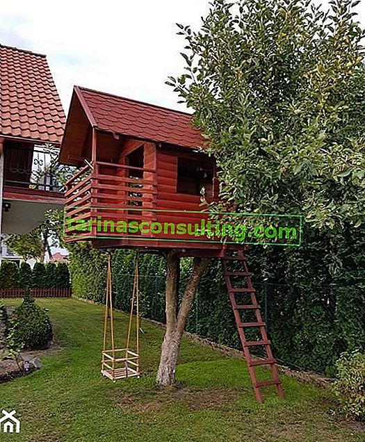 Come costruire una casa sull'albero? Vedi la casa della signora Ani