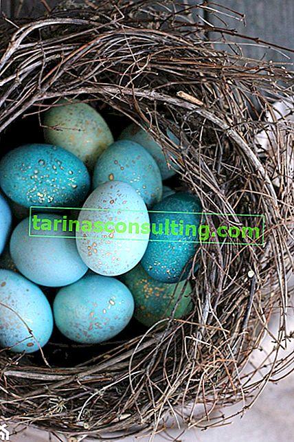 Décorations de Pâques faites à la main - faites-le vous-même