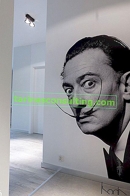 Salvador Dalí - 6 faits intéressants sur son travail