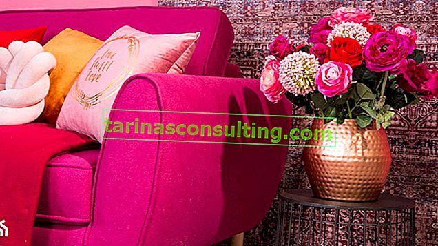 Focalizzazione sul colore: ROSA