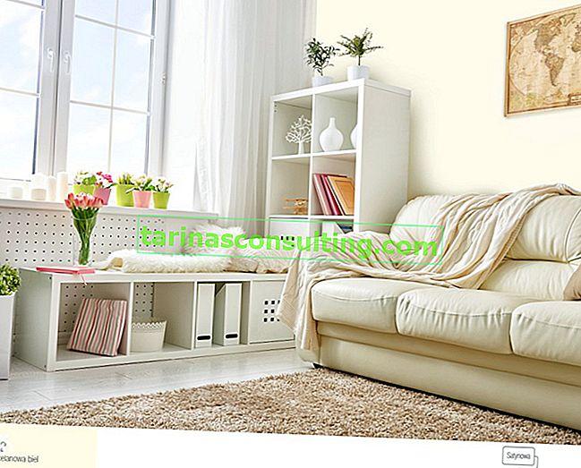 Classico luminoso in soggiorno. Scopri le 5 migliori tavolozze di colori