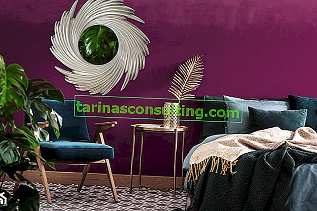 Viola negli interni: che colore va con le pareti viola?