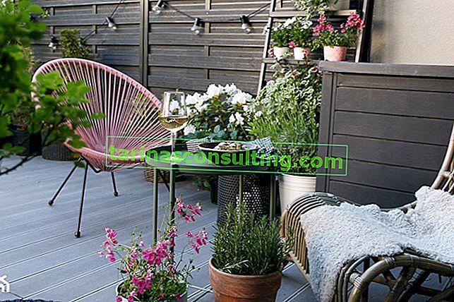 Fauteuil Acapulco - rencontrez un fauteuil à la mode pour le salon et le balcon