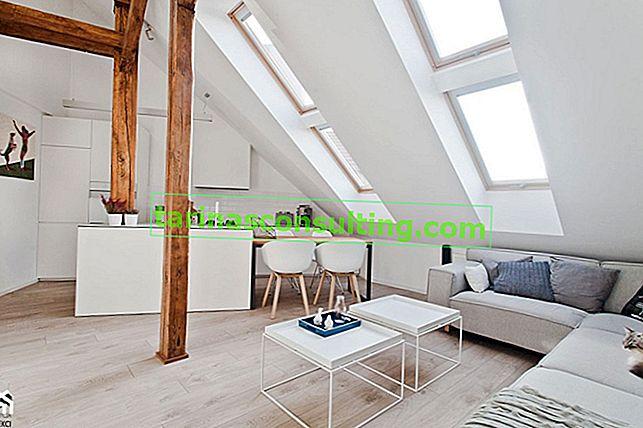 Quali finestre da tetto? Scegliamo le migliori finestre per mansarda