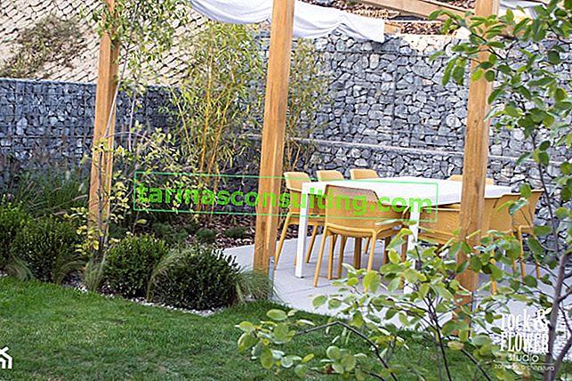 Come progettare e allestire un giardino passo dopo passo?