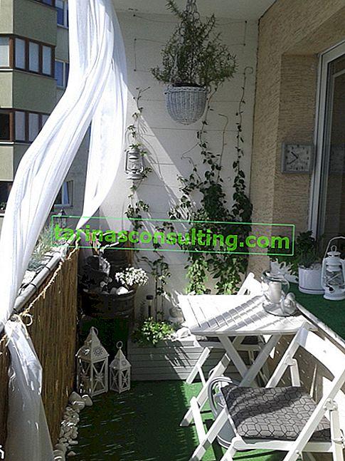 Come coprire il balcone dai vicini? 4 idee per coperture per balconi