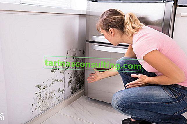 Umidità a casa: come sbarazzarsene in modo efficace?