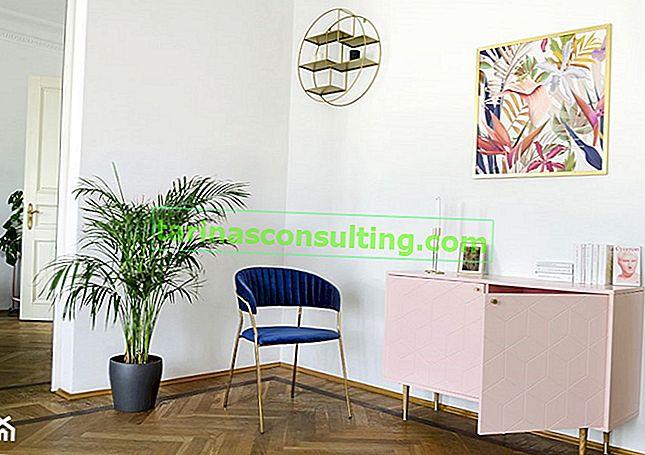 Stühle - welche zur Auswahl? Übersicht der beliebtesten Stuhlmodelle