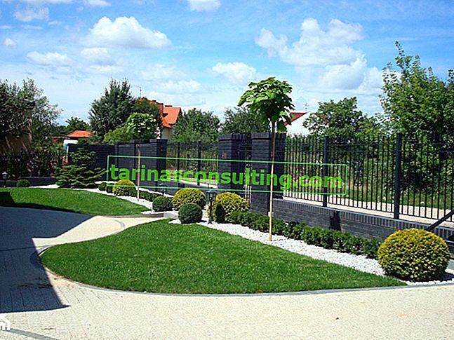 Hauszaun - voll oder durchbrochen? Welcher Zaun passt zu Ihrem Grundstück?