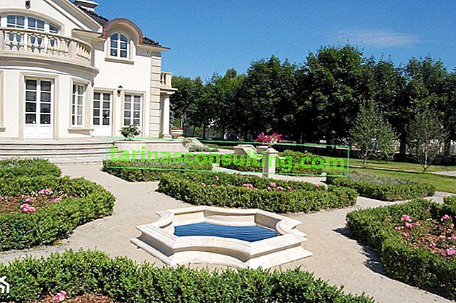 Französischer Garten: Wie gestaltet man einen Hausgarten im französischen Stil?