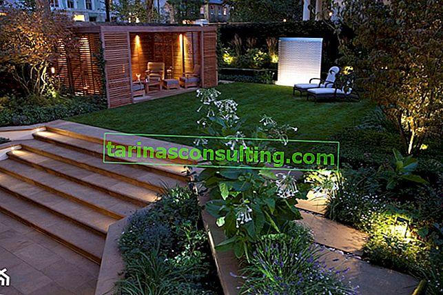 Gartentrends - ein moderner Garten
