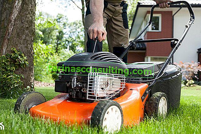 Welcher Benzin-Rasenmäher bis 700, 1000 und 2000 PLN funktioniert in Ihrem Garten?
