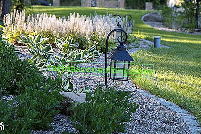 Welche Gartenlampen sollten Sie wählen? Übersicht über gängige Lösungen