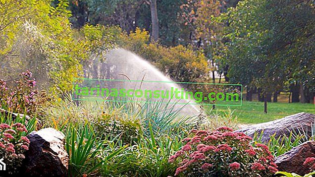 Gartenbewässerung - wie plant man ein Gartenbewässerungssystem?